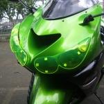 Headlight protector Green